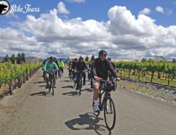 Ace It Bike Tours Vineyard Tour