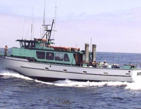 New Sea Angler Fishing Charter